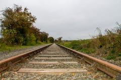Veraltetes railtrackovergrown Stockfotografie