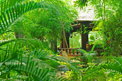 Veranda in de tropische tuin Royalty-vrije Stock Foto's