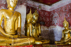 Veranda of Gild Buddha Sculptures at Wat Suthat, Bangkok of Thailand. Stock Images