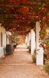 Veranda with grape leaves Stock Photos