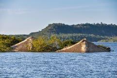 Verander doen Chao onder water in het Regenwoud van Amazonië, Brazilië Royalty-vrije Stock Foto