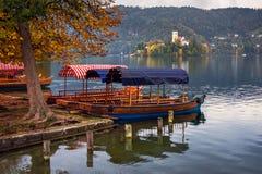 Verankerte Boote im See bluteten Wartebesucher lizenzfreie stockbilder
