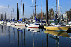 Verankerte Segelboote, Portland Oregon. lizenzfreies stockbild