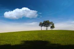 Verano, árboles, colina y cielo azul fotos de archivo