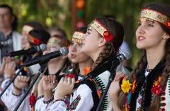 Verano cárpato multicultural de Polonynsky del festival fotografía de archivo libre de regalías