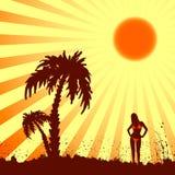 Verano caliente Imagen de archivo libre de regalías