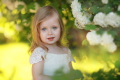 Verano de la muchacha del niño Fotografía de archivo libre de regalías
