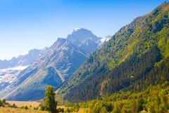 Verano del día de la montaña fotografía de archivo