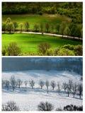 Verano del invierno del paisaje Imagenes de archivo