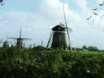 Verano en Holanda Foto de archivo libre de regalías