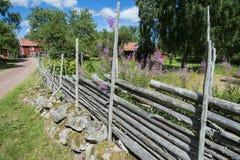 Verano en Suecia Foto de archivo