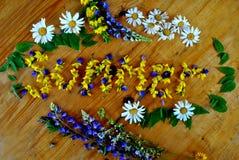 Verano florecido Fuera de las flores del campo imágenes de archivo libres de regalías