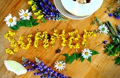 Verano florecido Fuera de las flores del campo imagenes de archivo