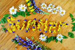 Verano florecido Fuera de las flores del campo Imagen de archivo