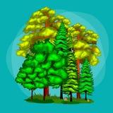 Verano Forest Tree verde y pequeños animales en naturaleza salvaje Árboles determinados del vector de la historieta en parque al  Imagen de archivo