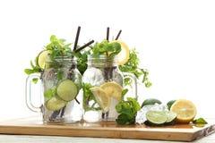 Verano fresco de la bebida del romero de la menta de la soda del limón de la cal Foto de archivo