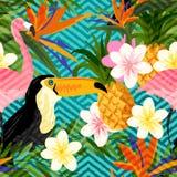 Verano geométrico tropical Foto de archivo libre de regalías