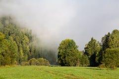 Verano, niebla en el río Montañas de Altai Imagen de archivo
