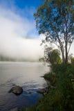 Verano, niebla en el río Montañas de Altai Imágenes de archivo libres de regalías
