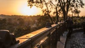 Verano o parque temprano del oto?o en la puesta del sol imágenes de archivo libres de regalías