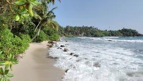 Verano perfecto Sri Lanka 4k a cámara lenta almacen de metraje de vídeo