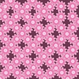 Verano rosado inconsútil de la belleza de la flor abstracta del modelo Foto de archivo libre de regalías