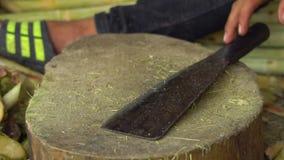 Verarbeitung eines Rohzuckerstocks Zuckerproduktion stock video footage