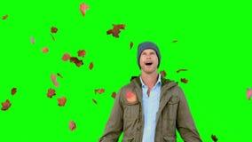 Verbaasde mens die dalende bladeren op het groene scherm bekijken stock videobeelden