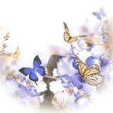 Verbazend boeket van de lenteviooltjes stock foto