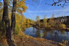 Verbazend de herfstlandschap dichtbij het water Stock Foto's