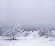Verbazend de winterlandschap Royalty-vrije Stock Afbeelding