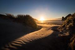 Verbazend die landschap van strand door gangstruiken en zandduin wordt betreden stock afbeelding