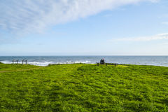 Verbazend landschap bij de kust van Schuilplaatsinham bij de Vreedzame Oceaan - SCHUILPLAATSinham - CALIFORNIË - APRIL 17, 2017 stock foto's