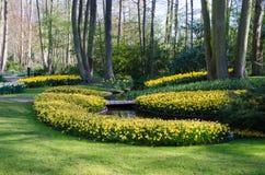 Verbazend landschap met kleurrijke bloembedden en bloempatronen Royalty-vrije Stock Foto