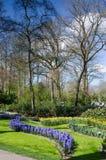 Verbazend landschap met kleurrijke bloembedden en bloempatronen Royalty-vrije Stock Foto's