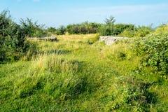 Verbazend landschap Targu Jiu Royalty-vrije Stock Fotografie