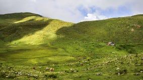 Verbazend landschap in Tirol royalty-vrije stock foto