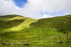 Verbazend landschap in Tirol royalty-vrije stock afbeelding