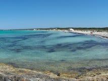 Verbazend landschap van het charmante strand S Trencs Het heeft de reputatie van Caraïbisch strand van Mallorca verdiend stock fotografie