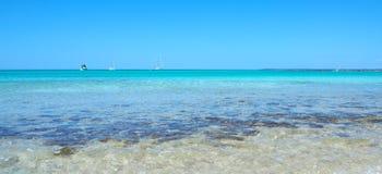 Verbazend landschap van het charmante strand S Trencs Het heeft de reputatie van Caraïbisch strand van Mallorca verdiend stock foto's