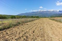 Verbazend Landschap van Rila Montain dichtbij dorp van Stob, Bulgarije Royalty-vrije Stock Foto