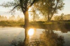 Verbazend mistig landschap in de zon royalty-vrije stock afbeelding