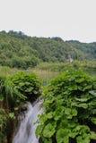 Verbazend Plitvice-Meren Nationaal Park, Kroatië Royalty-vrije Stock Foto's