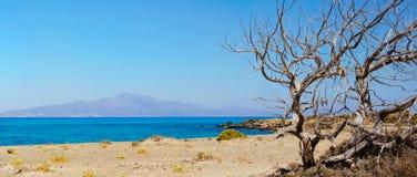 Verbazend Strand van Chrissi Island, dichtbij Kreta, Griekenland royalty-vrije stock foto