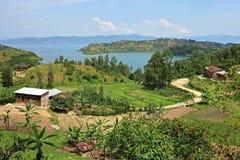 Verbazende aard in de Afrikaanse Kongo Stock Fotografie