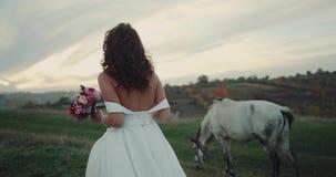Verbazende bruid die rond het paard lopen in het midden van stock videobeelden