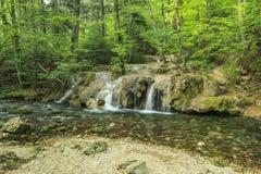 Verbazende cascades en duidelijke rivier in bos, het Nationale Park van Beusnita, Roemenië Royalty-vrije Stock Fotografie