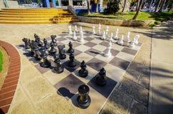 Verbazende close-upmening van een grote brede die schaakraad met het de cijfers van ` s door een zonstralen in tropische tuin dic Royalty-vrije Stock Afbeelding