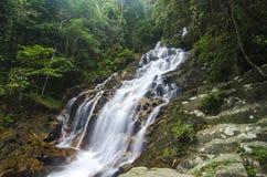 verbazende draperende tropische waterval natte en bemoste die rots, door groen regenwoud wordt omringd royalty-vrije stock fotografie