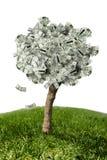 Verbazende geldboom op gras en witte achtergrond Royalty-vrije Stock Afbeeldingen